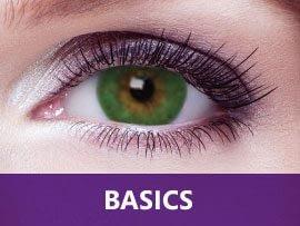 basics-tb